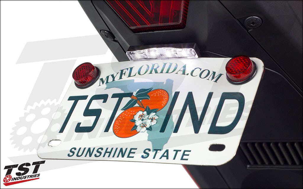 TST Industries LED License Plate Light (optional).
