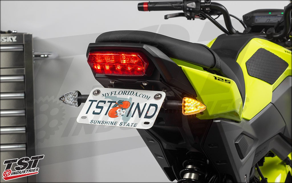 Compatible with the stock mounting location TST Fender Eliminator. (ARO18 clear signals shown)