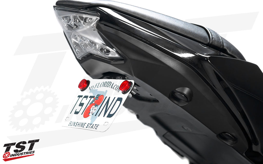 Tst Fender Eliminator For Kawasaki Ninja 650 Z650 2017