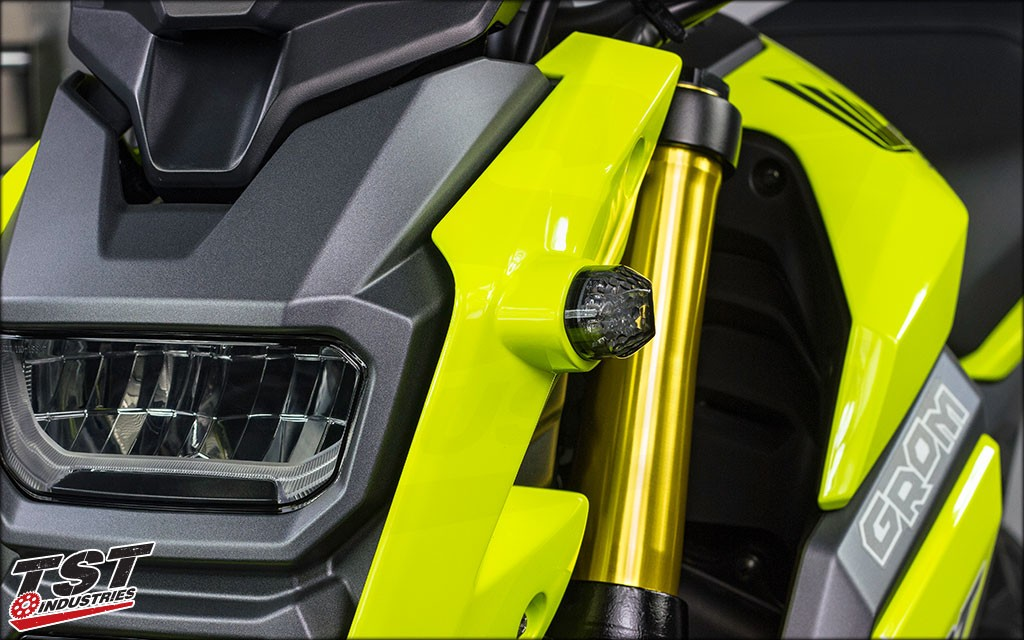 Smoked Lens on the 2017 Honda Grom.