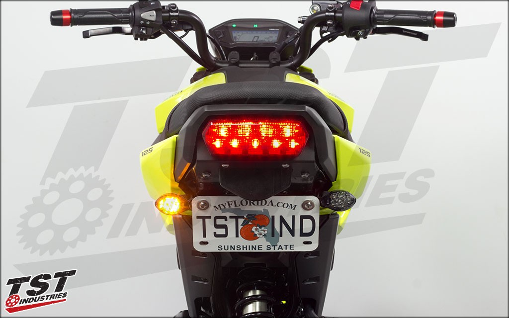 Compatible with the Lower Location mounting TST Fender Eliminator.