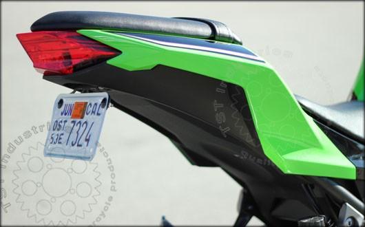 Ninja 300 Fender Eliminator
