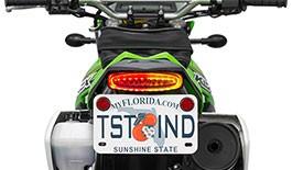 TST LED Integrated Tail Light & Fender Eliminator System for Kawasaki KLX250 / S / SF